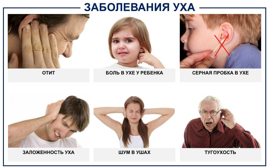 заболевание ушей у взрослых и детей